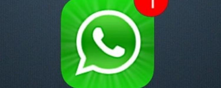 whatsapp-brasil-futurecom