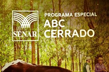 Dezembro_projeto-abc-do-cerrado-sao-miguel-do-araguaia-28-08-2015-fredoxcarvalho-fill-350x230